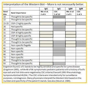 Интерпретиране на западен имуноблот за лаймска болест